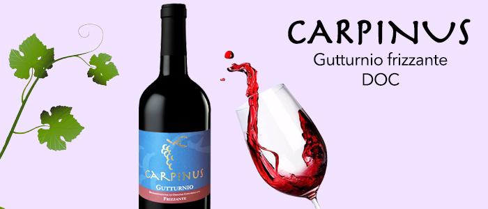 Carpinus Gutturnio Frizzante DOC