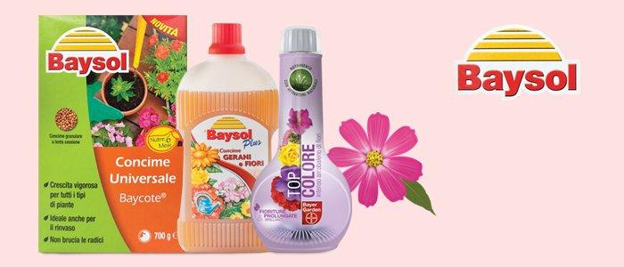 Bayer Concimi per piante e giardino