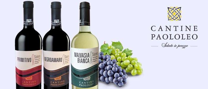 Cantine PaoloLeo: Chardonnay, Malvasia, Negroamaro e Primitivo